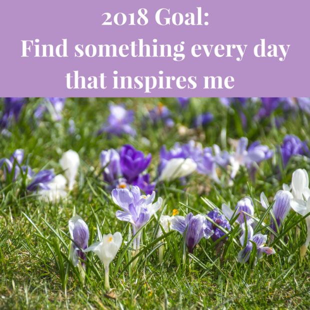 2018 Goal_Find Something Hopeful In