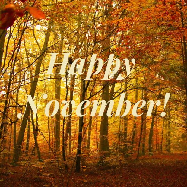 Happy November!